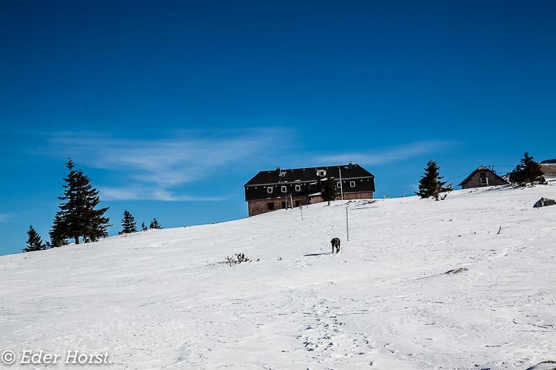 Schneeschuhtour zur Hochleckenhütte. 2016