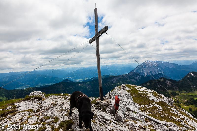Bergwandertour auf der Tauplitzalm.  Almkogel  2121m