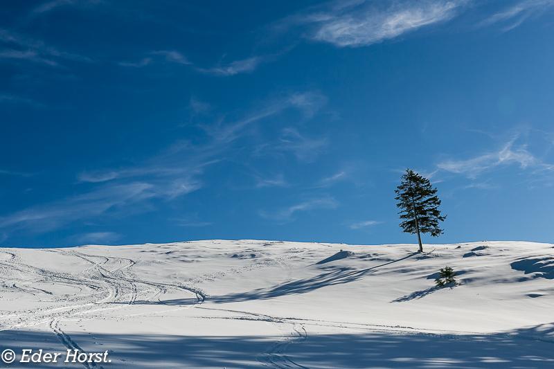Schneeschuhtour- Hoher Zinken 1746m