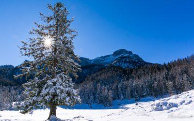 Winterwanderung vom Schwarzensee zur Eisenauer Alm..